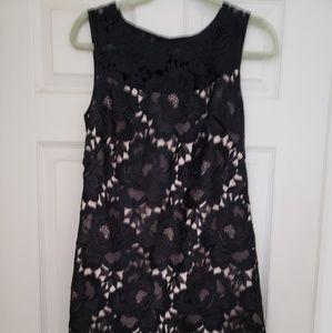 White House Black Market sheath lace dress